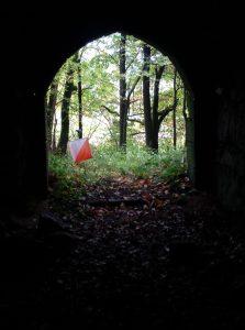 Licht am Ende des Tunnels: Endlich wieder mehr OL-Training